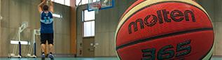Pandas Bonnac Basket